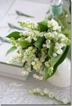 Lily of the valley, has been a favorite since childhood