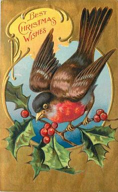 Luv!Vintage Christmas Card ~ Red-Robin