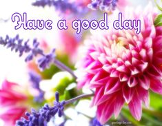 Have a Nice Day - Best Animated GIFs, Quotes, Pics. #EverydayEcards, #GoodDayWishes, #GOODMORNING http://greetings-day.com/have-a-nice-day-best-animated-gifs-quotes-pics.html