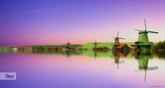 Photograph A purple dream by Efemir Art   on 500px