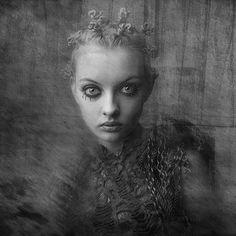 by Franko Wiktor