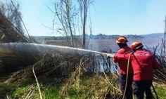 Elvas: Bombeiros combateram incêndio florestal