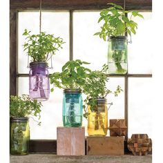 Hydroponic Gardening Ideas Mason Jar Indoor Herb Garden - These vintage-inspired planters use a passive hydroponic system that makes it easy to grow your own herbs. Hydroponic Farming, Hydroponic Growing, Hydroponics System, Backyard Aquaponics, Permaculture, Herb Garden In Kitchen, Home Vegetable Garden, Herbs Garden, Garden Tools