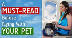 Flying a pet carries inherent risks and stressors -- if you have no choice but to bring your pet on a flight, here are some tips you should find helpful. http://healthypets.mercola.com/sites/healthypets/archive/2014/12/11/flying-with-pets.aspx