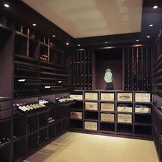 Wine Cellar Design, Pictures, Remodel, Decor and Ideas - page 7