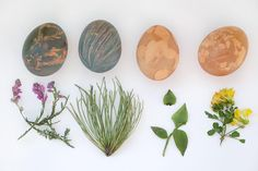 Dye Easter Eggs With Natural Dye | HGTV