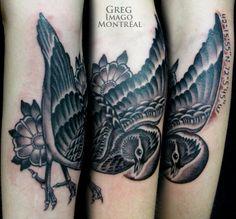 Black Bird « GREG IMAGO MONTREAL