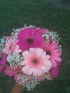 Gerbera daisies with different shades of pink with baby's breath. created by Yola's Creations