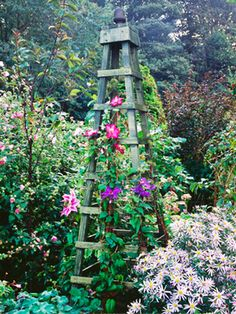 Climbing Plant Obelisk...step-by-step instructions on HGTV.com