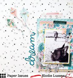 Paper Issues: Dream Elodie Lusseau