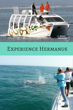 From June to December the very popular whale watching boat trips also depart from the Hermanus Harbour to give visitors a close-up experience of these gentle giants of the ocean. #Hermanus #Boattrip #WhaleWatching #Overberg #CapeWhaleCoast #SouthAfrica #Africa