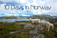 10 Day Norway Itinerary