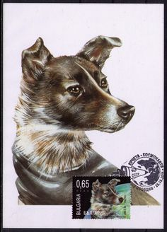 2011 Bulgaria Maxi card SPACE Dog Cosmonaut - LAIKA - RARE !!!