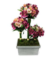 Astromelias garden Sweet and chic. This is the presentation of these bouquets astromelias on an original container.