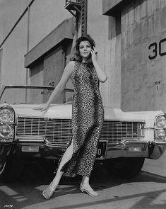 Ann Margret Photos, Celebrity Cars, Vintage Hollywood, Up Girl, Timeless Beauty, Vintage Photos, Vintage Cars, Movie Stars, Classic Cars