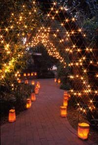 Luminaria night at the Tucson Botanical Gardens