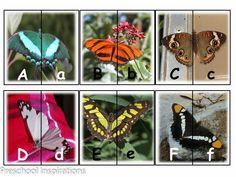 Match upper case and lower case letter! Butterfly Alphabet Matching Cards by Preschool Inspirations Preschool Bug Theme, Preschool Literacy, Kids Learning Activities, Spring Activities, Alphabet Activities, Preschool Crafts, Bugs, Kindergarten, Matching Cards