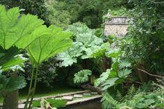 Le jardin de Kerdalo dans les Côtes d'Armor