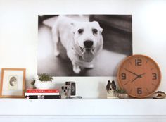 """Oversized Prints for just $5! """"Engineer Prints"""" at Staples!"""
