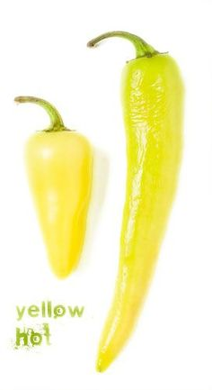 Yellow hot pepper