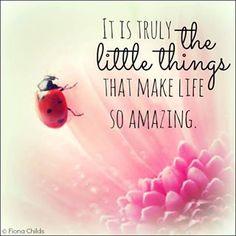 een  blog over de positieve dingen in het  leven