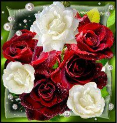 316 Meilleures Images Du Tableau Roses Rouges Mauves Et Noires En