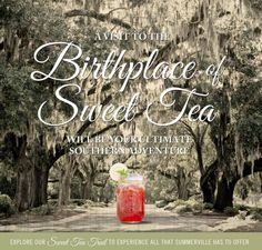 """Summerville, SC as the Birthplace of Sweet Tea makes this destination the """"ultimate southern adventure"""" -- Don't forget to take a guided tour on the Sweet Tea Trolley!"""