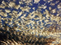 William Eggleston- I love this dusk cloud photo because of the all the different colors.  white/yellow/black clouds and blue sky. It's simple yet all the different shapes of the clouds and color variation keep it interesting.