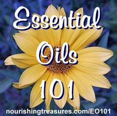 Essential Oils 101 – All Your Questions Answered