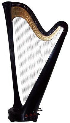 Harp, the next instrument I want to learn and also a beautiful addition to the decor.
