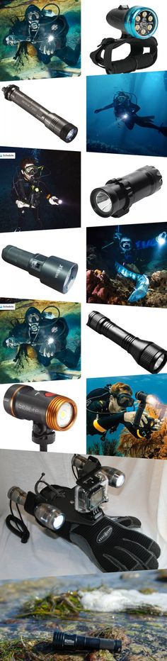 With so many different types of lights on the market, trying to figure out which is right for you could be more of a headache than you want to deal with.   We've taken a lot of the hard work out of the buying process and have highlighted 10 of the best scuba dive lights available on the market!   #divelights #divetorch #divelight #light #diveflashlight #underwaterlight #torch #scubalights #scubadiving #divinglight Underwater Pictures, Underwater Lights, Handheld Spotlight, Dive Rite, Best Scuba Diving, Scuba Diving Gear, Gopro Camera, Light Beam, Snorkeling