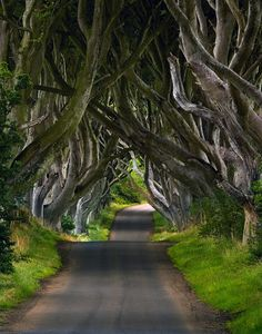 visit Northern Ireland.. All those years in the Republic and I never got the chance! This is near Belfast