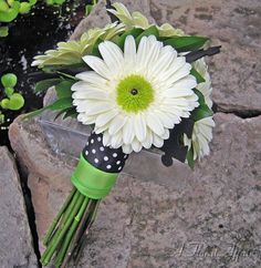 BB0277-White and Green Gerbera Daisy Bridal Bouquet