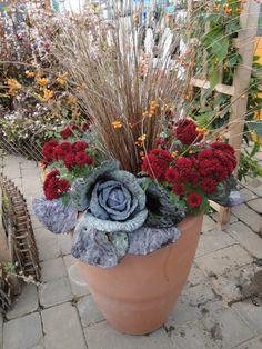 Fall planter www.westendflorist.com