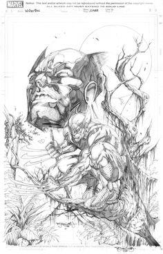 Wolverine by Stephen Jorge Segovia (Marvel comics)