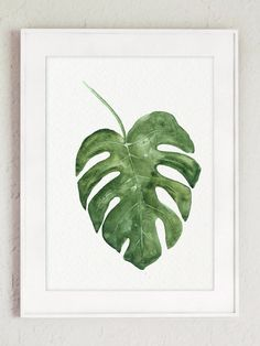 Impresión del arte de Monstera Tropical Palma hoja acuarela
