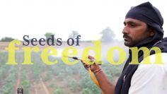 Seeds of Freedom - Trailer. Visit www.seedsoffreedom.info to watch the full film which is narrated by actor Jeremy Irons.  Global agricultur...