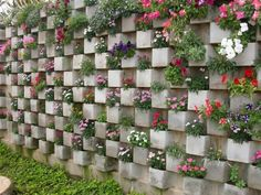 """12 ideas para tu huerto vertical """"Use Cinder Blocks To Plant Flowers Inside You can create a whole garden wall using cinder blocks. Arrange them in some cr Growing Flowers, Planting Flowers, Flowers Garden, Cinder Block Garden, Cinder Blocks, Cinder Block Ideas, Walled Garden, Garden Projects, Garden Tips"""