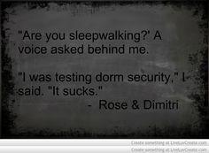 Vampire Academy Quotes | Rose & Dimitri