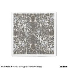 Brainstorm Neurons Biology