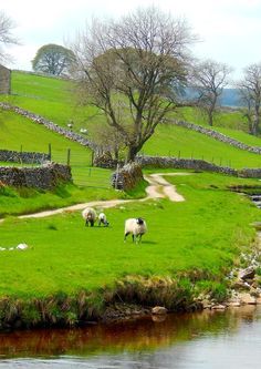 Oughtershaw, Yorkshire Dales, England I could live in a beautiful place like this and never be bored. Yorkshire Dales, Yorkshire England, Cornwall England, Devon England, British Countryside, England And Scotland, All Nature, British Isles, Belle Photo