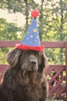Leroy on his birthday