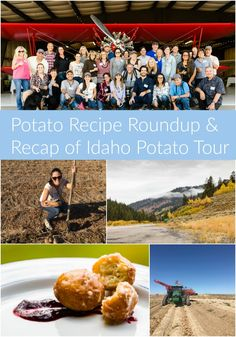 Potato recipe roundu