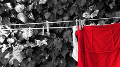 Clothesline. Self-Realization Fellowship, Encinitas, CA.