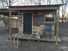 This is a 12x12 tiny house made from pallets, but I think it would be a GREAT chicken coop as well.