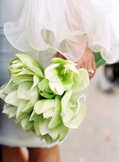 Greens - Beautiful - Alison Bouquet by Karen Wise {via Flickr}