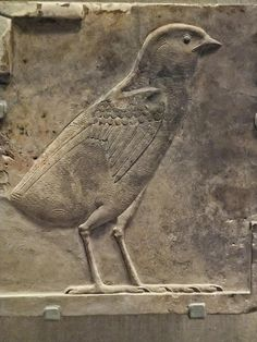 Relief plaque showing a chick Egypt Ptolemaic Period 300 BCE Limestone, via Flickr.