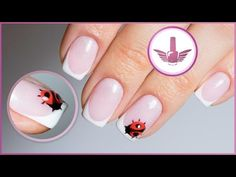 Nail design: French gel with lacquer. French manicure Ladybug - YouTube