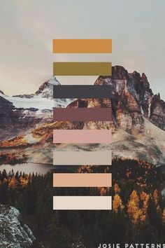 Natural Color Palette Ideas Natural Color Palette Ideas 2019 can't get enough of these color pigments! When designing, whether that be on the or in the see how you can incorporate these warm colors! Palettes Color, Nature Color Palette, Colour Pallette, Colour Schemes, Modern Color Palette, Colors Of Nature, Decorating Color Schemes, Brown Colour Palette, Winter Colour Palette