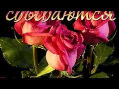 Удачной недели. Видео пожелание. | МУЗыкальный подарОК